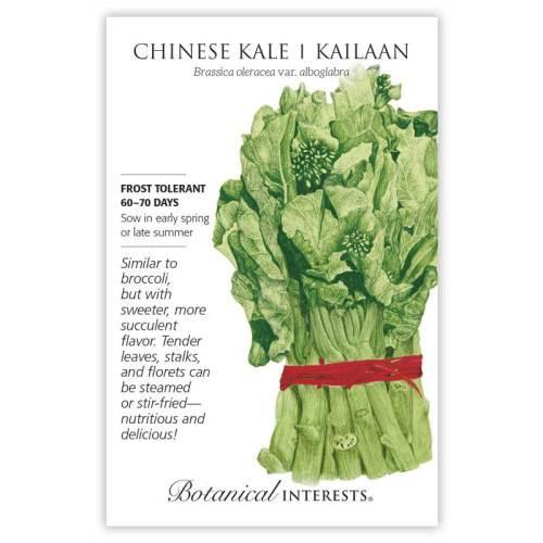 Chinese Kale (Kailaan)