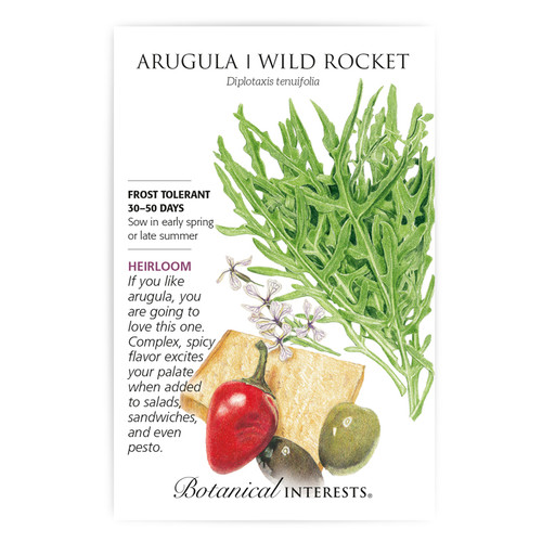 Arugula/Wild Rocket Heirloom