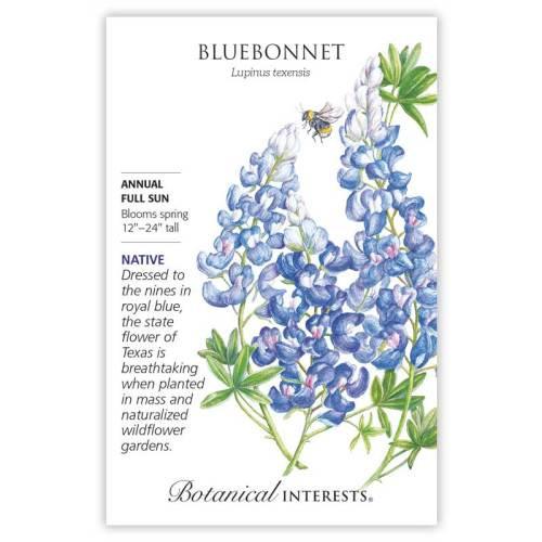 Bluebonnet Seeds Native