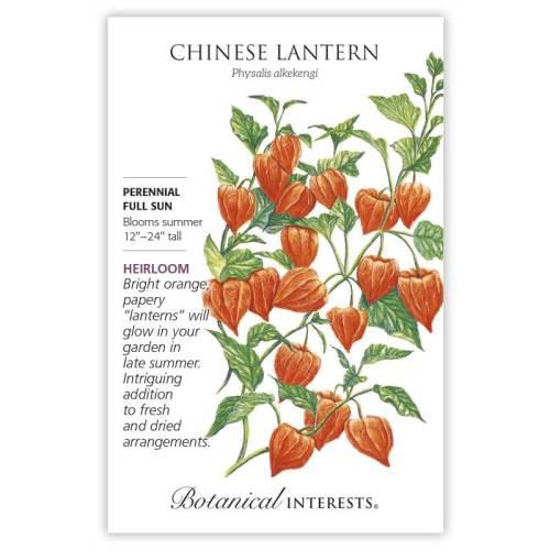 Chinese Lantern Seeds Heirloom