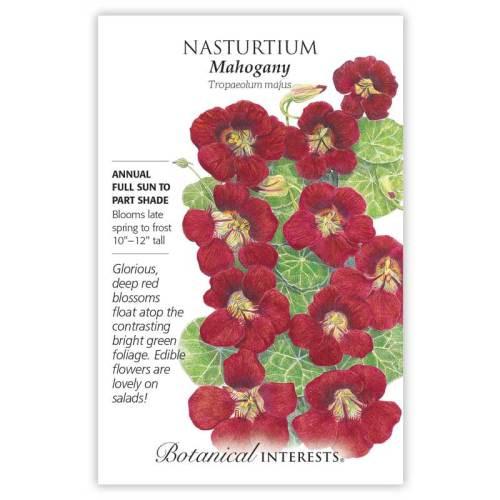 Mahogany Nasturtium Seeds