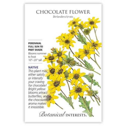 Chocolate Flower Seeds Native