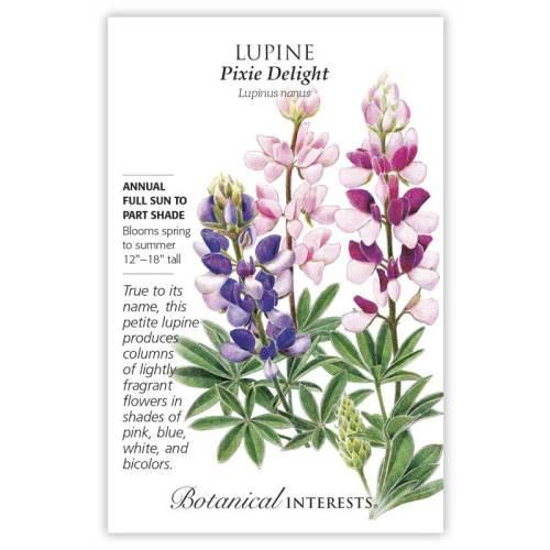 Pixie Delight Lupine Seeds