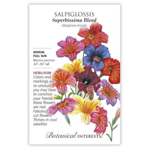 Superbissima Blend Salpiglossis Seeds Heirloom