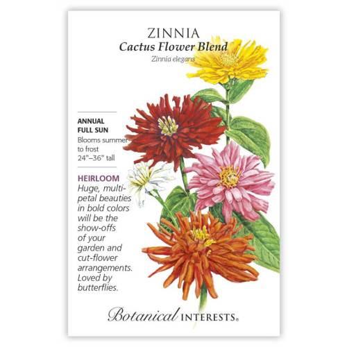 Cactus Flower Blend Zinnia Seeds Heirloom