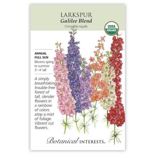 Galilee Blend Larkspur Seeds Organic