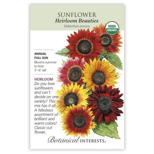 Heirloom Beauties Sunflower Seeds Organic Heirloom