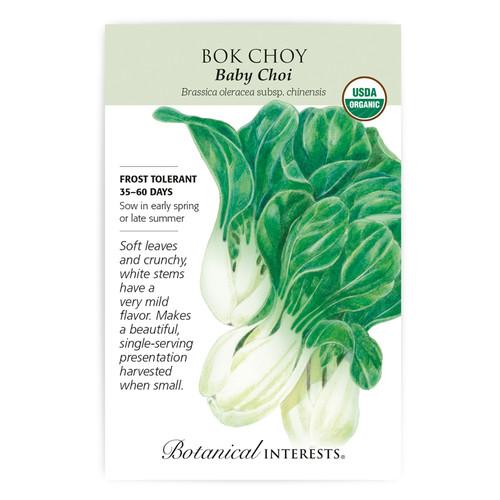 Baby Choi Bok Choy Seeds Organic