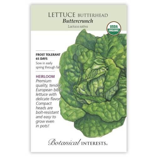 Buttercrunch Butterhead Lettuce Seeds Organic Heirloom