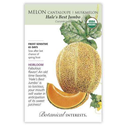 Hale's Best Jumbo Cantaloupe/Muskmelon Melon Seeds Organic Heirloom