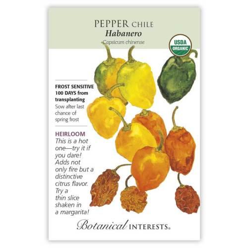 Habanero Chile Pepper Seeds Organic Heirloom
