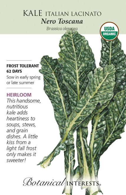 Kale Italian Nero Toscana Organic Organic Heirloom