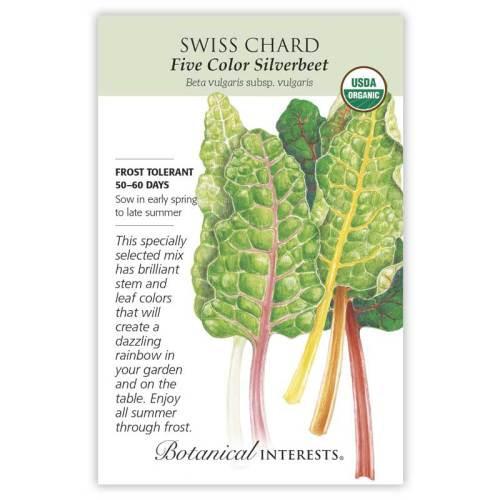 Five Color Silverbeet Swiss Chard Seeds Organic