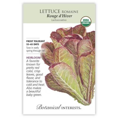 Rouge d'Hiver Romaine Lettuce Seeds Organic Heirloom