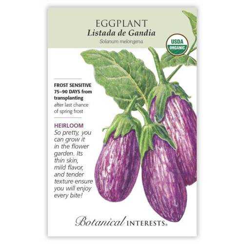 Listada de Gandia Eggplant Seeds Organic Heirloom