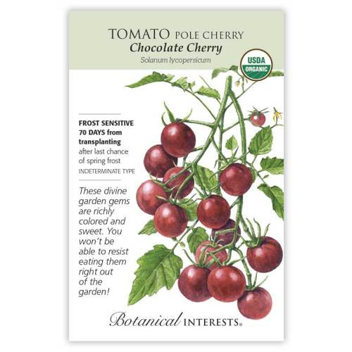 Chocolate Cherry Pole Cherry Tomato Seeds Organic