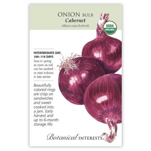 Cabernet Bulb Onion Seeds Organic
