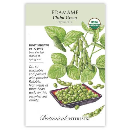 Chiba Green Edamame Seeds Organic