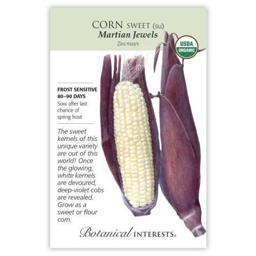 Martian Jewels Sweet Corn Seeds Organic