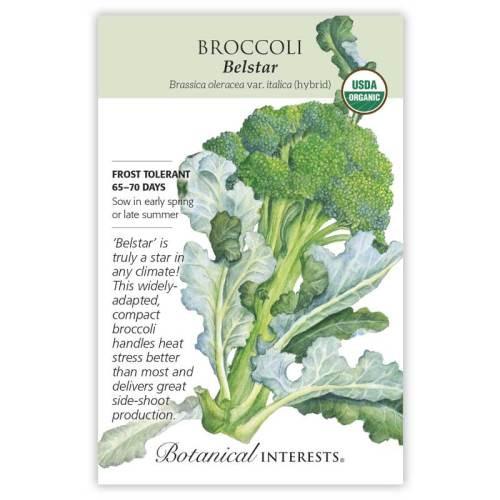 Belstar Broccoli Seeds Organic