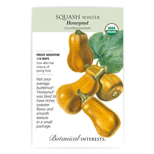 Honeynut Winter Squash Seeds Organic
