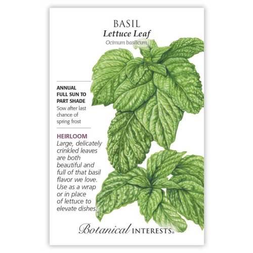 Lettuce Leaf Basil Seeds Heirloom
