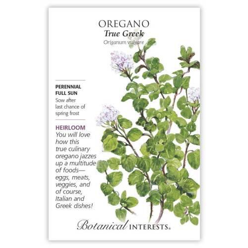 True Greek Oregano Seeds Heirloom