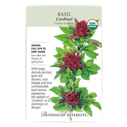Cardinal Basil Seeds Organic