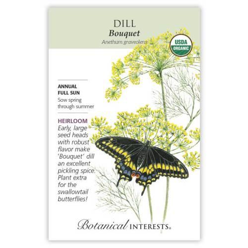 Bouquet Dill Seeds Organic Heirloom