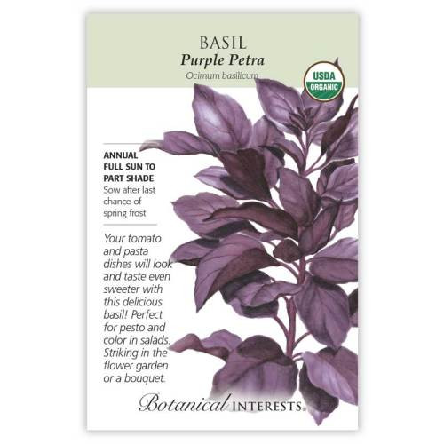 Purple Petra Basil Seeds Organic