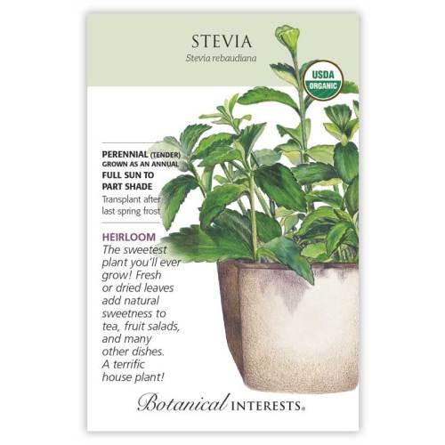 Stevia Seeds Organic Heirloom