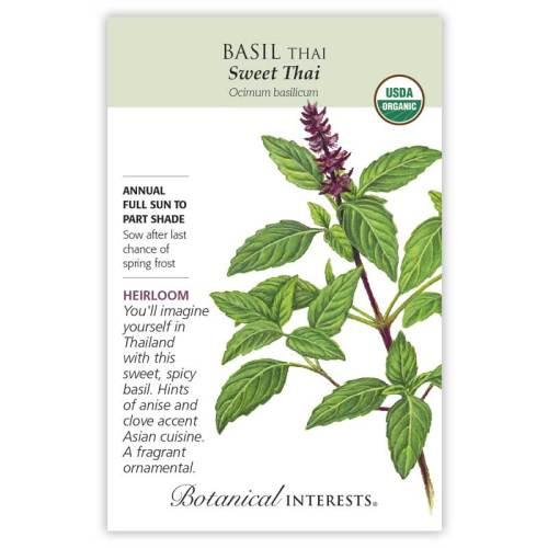 Sweet Thai Basil Seeds Organic Heirloom