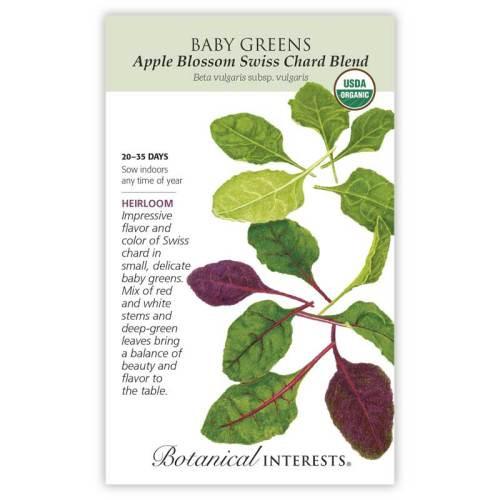 Apple Blossom Swiss Chard Blend Baby Greens Seeds Organic Heirloom
