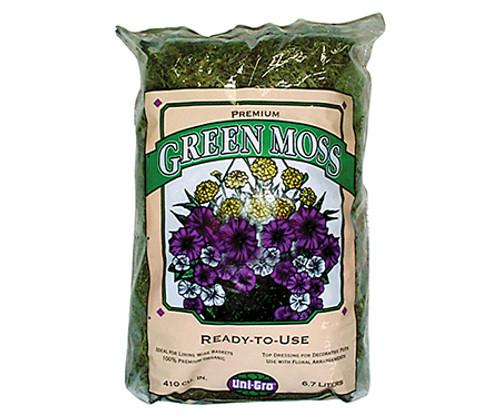 Green Moss - 1 cf