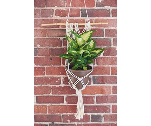 Wall Planter - Antique White Macrame - Large