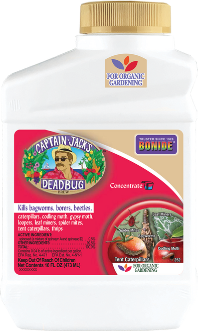 Captain Jack's Dead Bug Brew® Concentrate - 16 oz