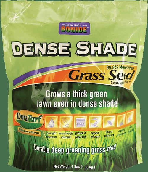Dense Shade Grass Seed - 3 lbs