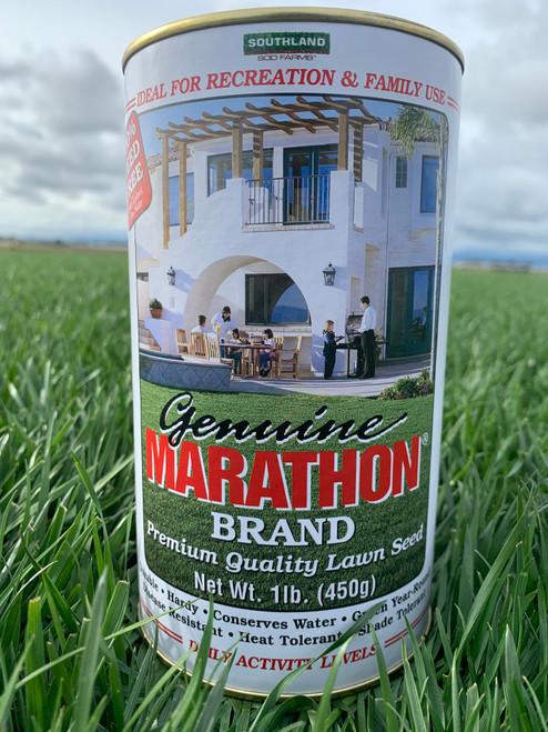 Marathon Seed - 1 lb