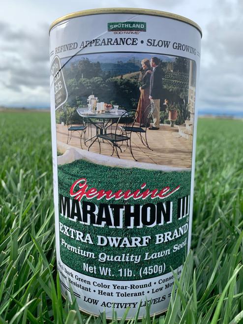 Marathon III Seed - 1 lb