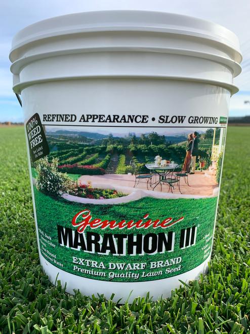 Marathon III Seed - 5 lb