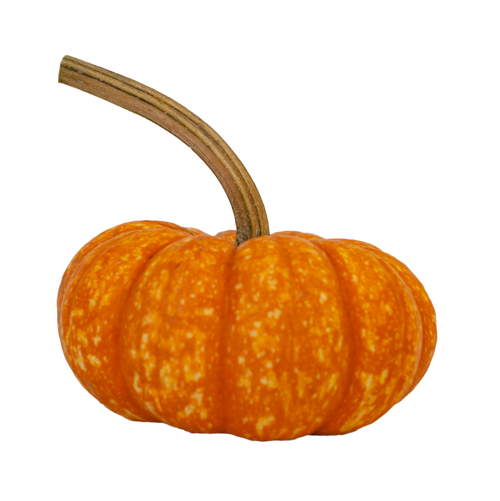 Sparkler Mini Pumpkin