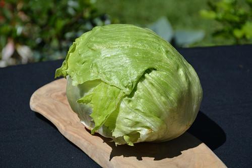 Lettuce Iceburg Crispino