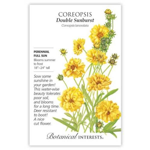 Double Sunburst Coreopsis Seeds