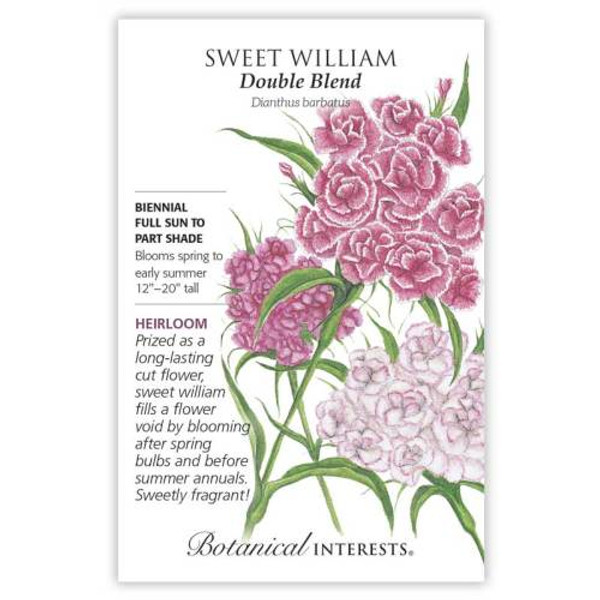 Double Blend Sweet William Seeds Heirloom