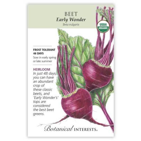 Early Wonder Beet Seeds Organic Heirloom