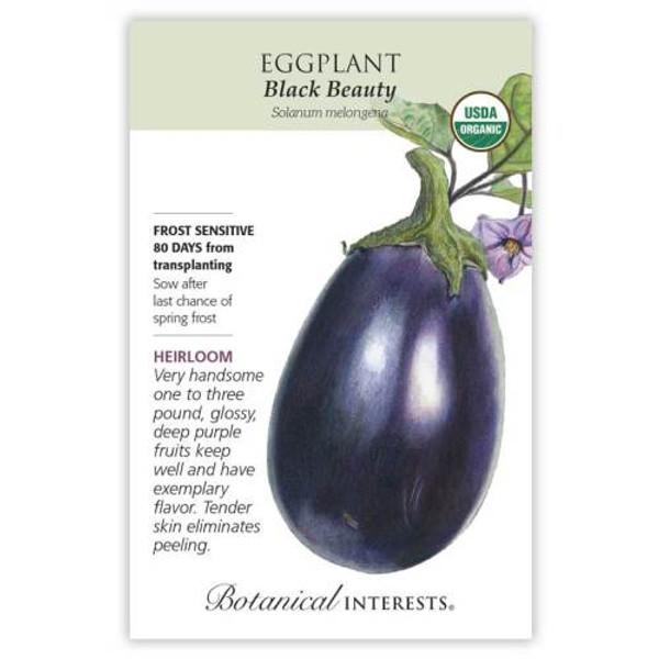 Black Beauty Eggplant Seeds Organic Heirloom