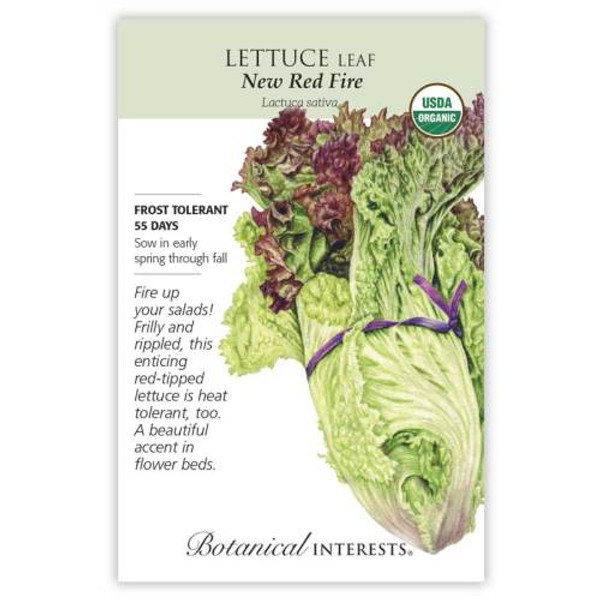 New Red Fire Leaf Lettuce Seeds Organic