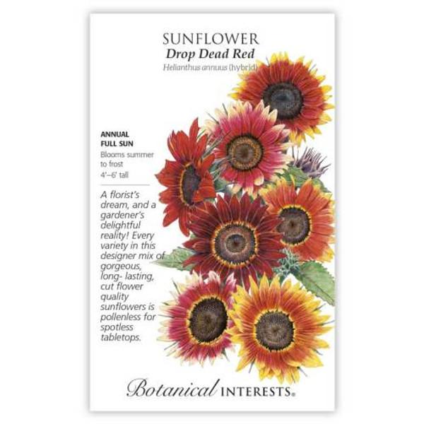 Drop Dead Red Sunflower Seeds
