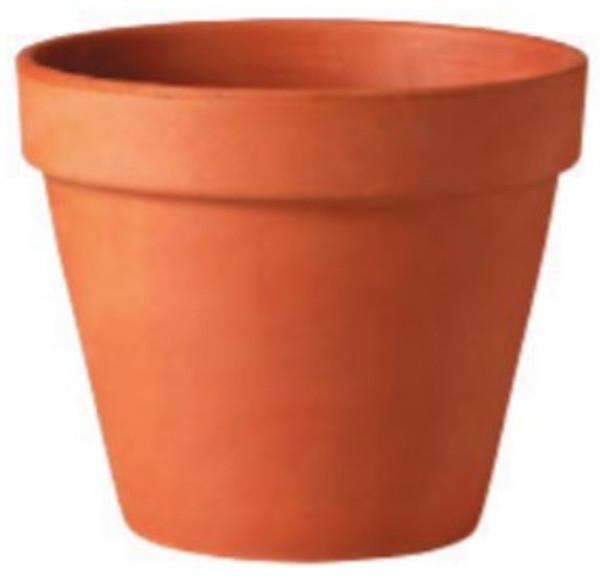 Glazed Ceramic Terra Cotta Standard Pot - 8.25 inch