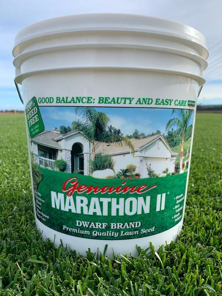 Marathon II Seed - 5 lb